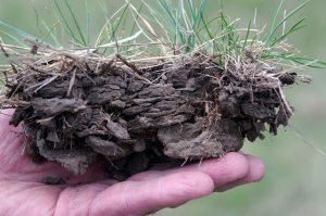 Soil Health Concerns | South Dakota Soil Health Coalition
