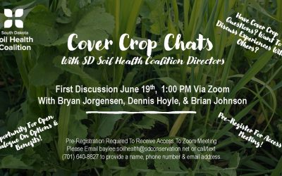"""Cover Crop Chats"" With SDSHC Directors 6/19"